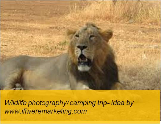 experiential marketing-photography contest-www.ifiweremarketing.com