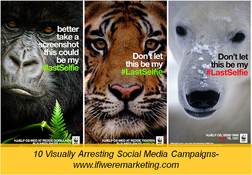 wwf-social media campaigns-www.ifiweremarketing.com